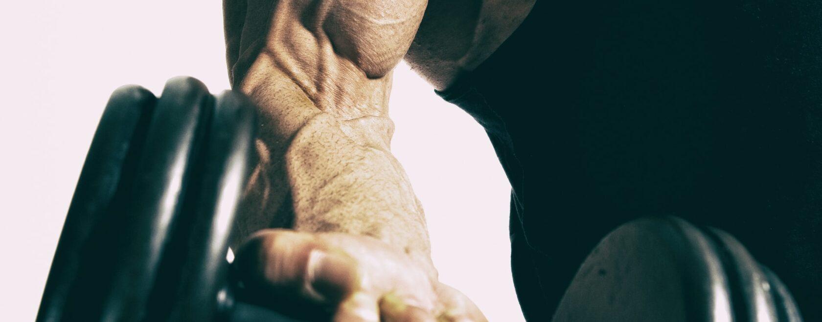 Ile może urosnąć biceps w miesiąc
